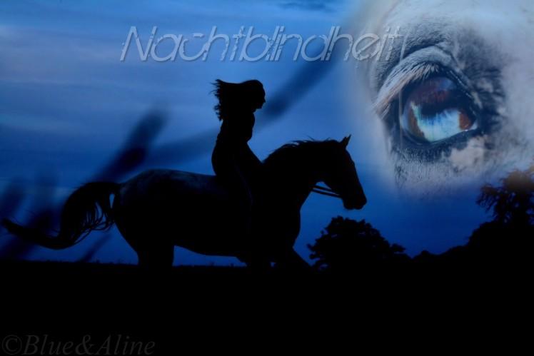 Nachtblindheit1