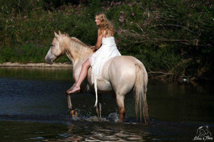 Erstes Pferd1